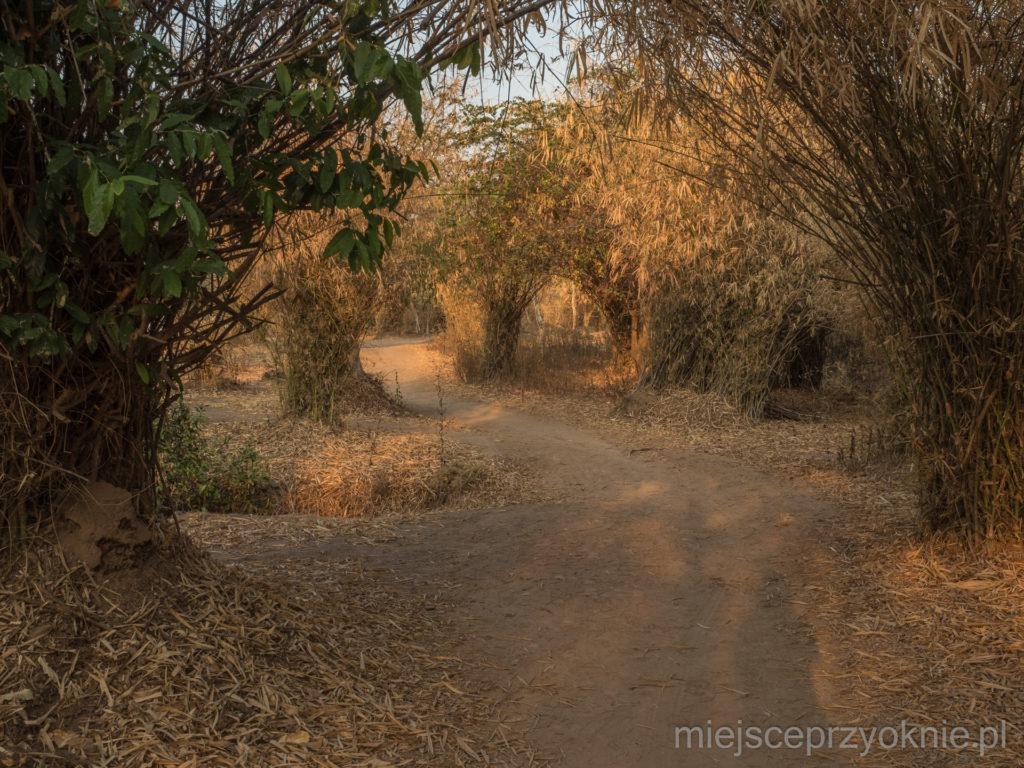 Ścieżka wzdłuż wodospadu