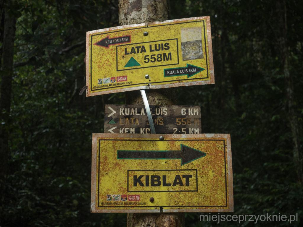 Kiblat, czyli kierunek, w którym muzułmanie zwracają się w czasie modlitwy