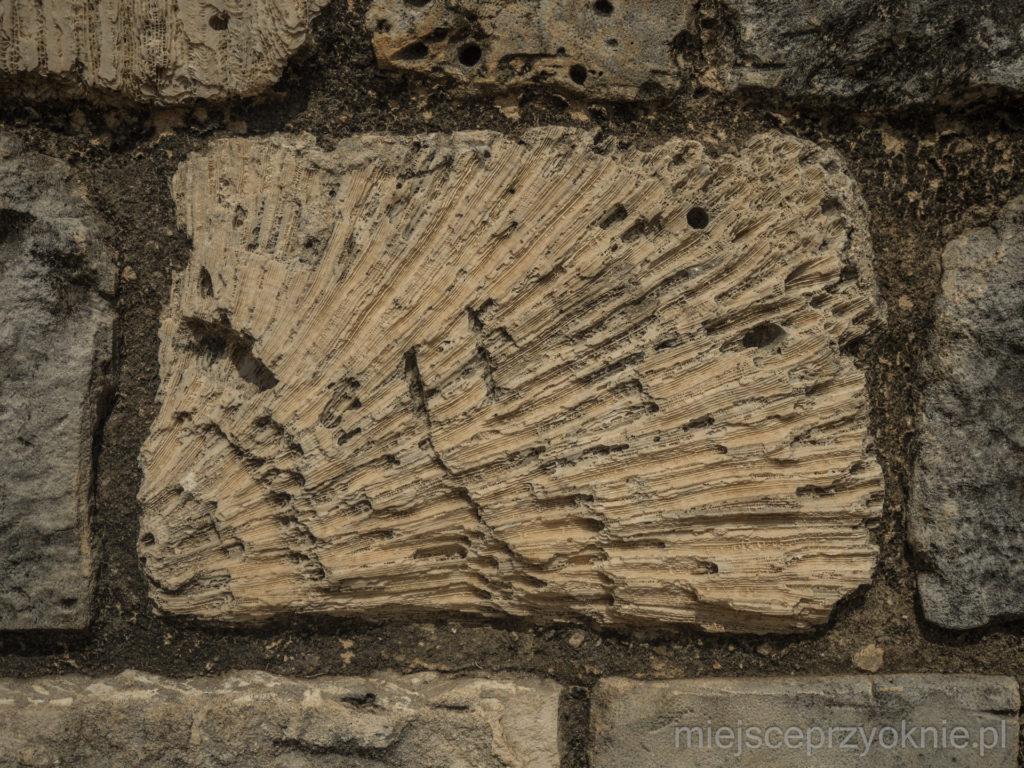 Mury fortu są zbudowane ze skamieniałych koralowców